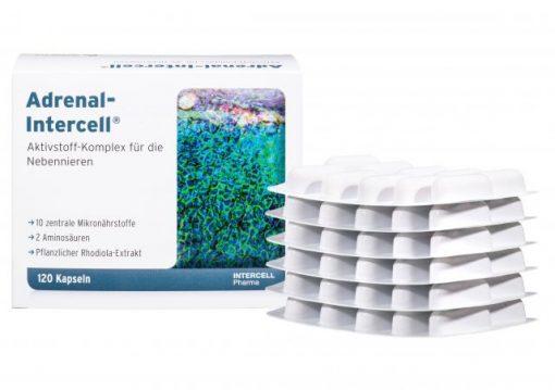 Adrenal-Intercell